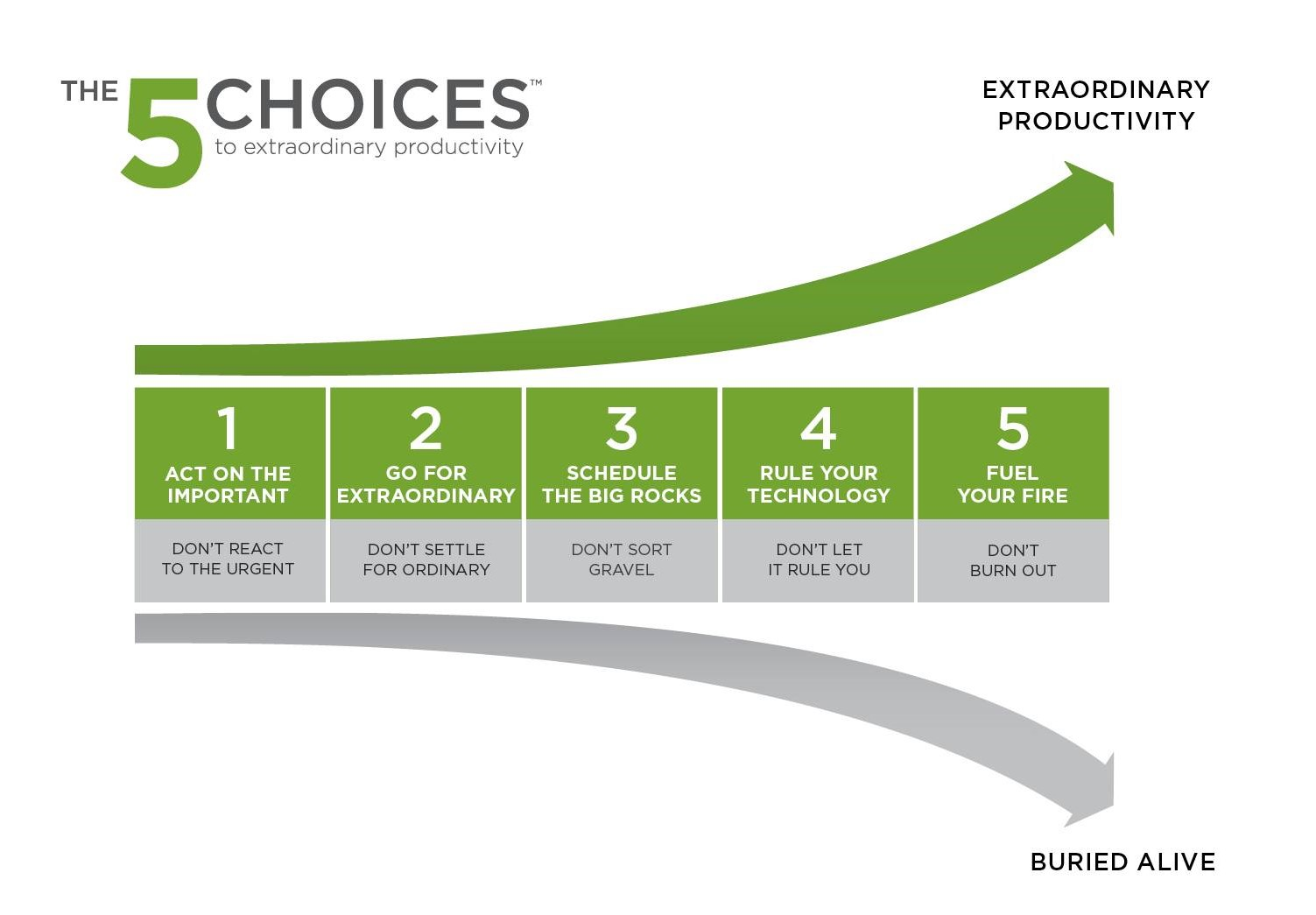The 5 Choices To Extraordinary Productivity on model guide